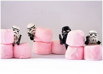 Storm Troopers Fighting the Battle by kiwi_gal @ flickr